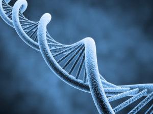 Física, Química y Biología - Talent Up Refuerzo y Formación